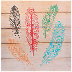 Canvas 5 Plumas colores 40x40 cm