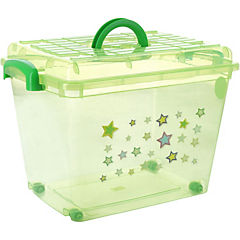 Caja 35 l verde