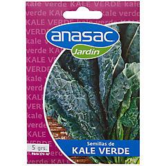Semilla hortaliza kale verde 5 gramos