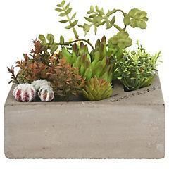Suculentas artificial maceta cemento 14 cm