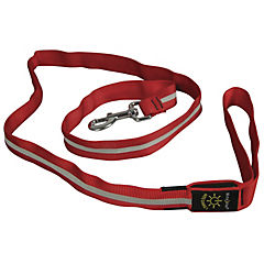Correa de perro con luz led roja reflectante