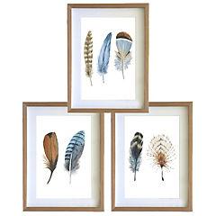Set 3 cuadros 40x50 cm marco madera plumas café y azul
