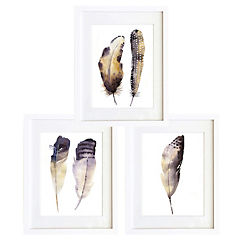 Set 3 cuadros 30x40 cm marco  plumas acuarelado