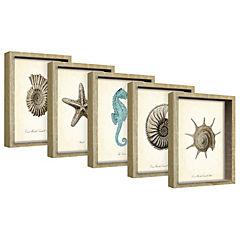 Set 5 cuadros 12x17 cm marco madera natural diseño mariposas