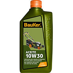 Aceite 10W30 1 litro