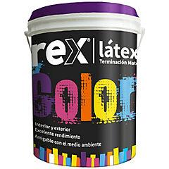 Pintura latex 1 gl  rojo colonial