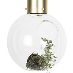 Lámpara colgante 60 W vidrio incoloro ahumado
