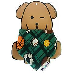 Pañoleta Mascota Deporte Verde