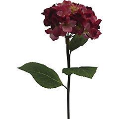 Hortensia 76 cm fucsia