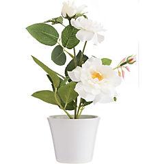 Arreglo rosas blancas seda con base cerámica 26 cm