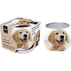 Vela neutralizador olor perro
