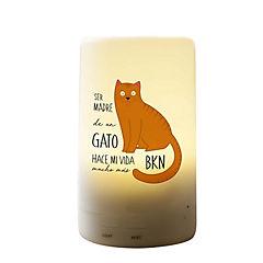 Humidificador gato naranjo