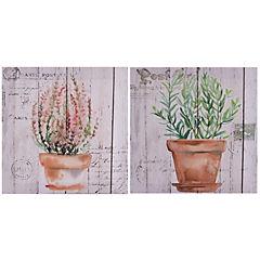 Set canvas 28x28 cm macetas con hierbas