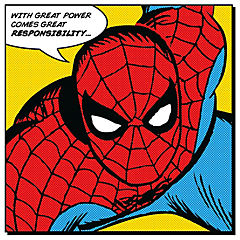 Canvas spiderman frase 40x40 cm