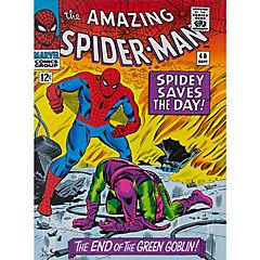 Canvas spiderman green 60x80 cm