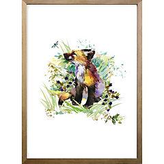 Cuadro Foxy 40x30 cm