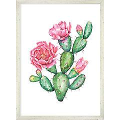 Cuadro Flower Cactus 50x35 cm