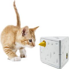 Juego queso para gatos