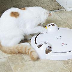 Juego ratonera para gatos