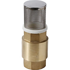 Válvula pie con filtro 1
