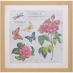 Cuadro flores mariposa 50x50 cm