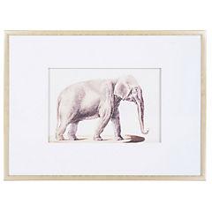 Cuadro con dibujo de elefante