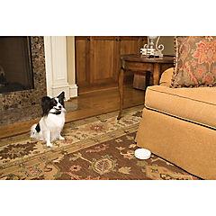 Barrera instantánea indoor inalámbrica con 1 collar para perro
