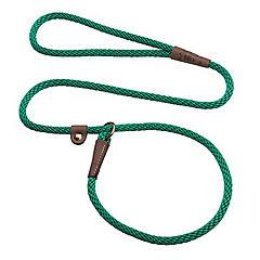 Correa-collar dos en uno kelly green
