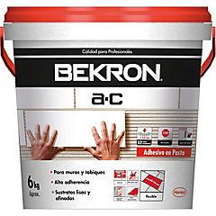 BEKRON A-C ENVASE  6 KG.