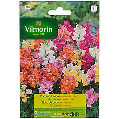 Semilla flor perrito enana 5 gr sachet