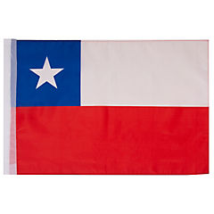 Bandera genero 60x90 cm