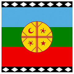 Bandera mapuche 90x150 cm