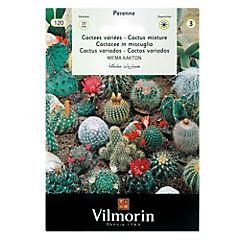 Semilla flor cactus 5 gr sachet