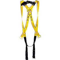 Arnés de 3 argollas con cinturon