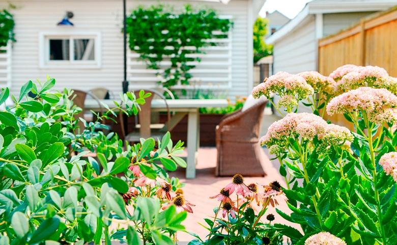 Jardinear: los beneficios de rodearte de plantas