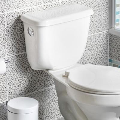 WC y Estanques