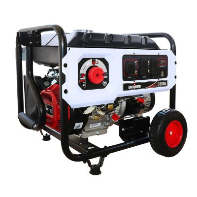 Generador a gasolina 7000 w