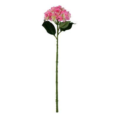 Vara de hortensia rosa