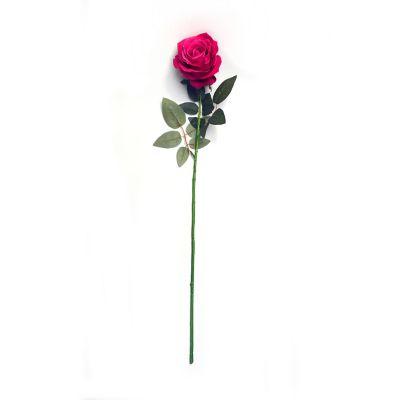 Rosa cabbage aterciopelada fucsia