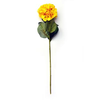 Vara de hortensia amarillo
