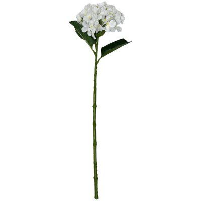 Vara de hortensia blanca