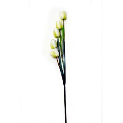 Vara de tulipán crema