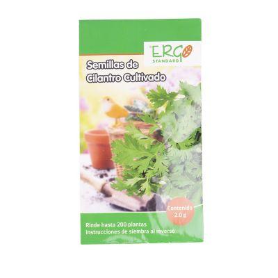 Semillas de cilantro cultivado