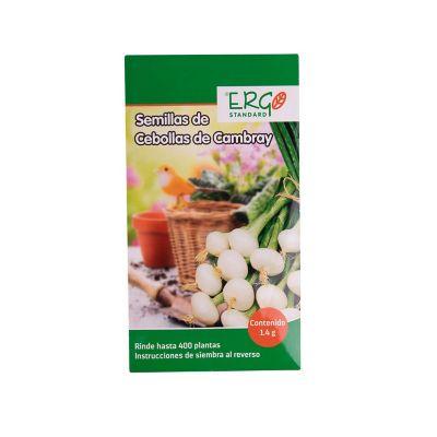 Semillas de cebollas de cambray