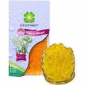 Perlas de hidrogel deshidratadas amarillo oro 5 g