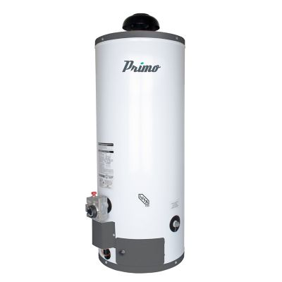 Calentador de depósito primo gas LP 60 lt