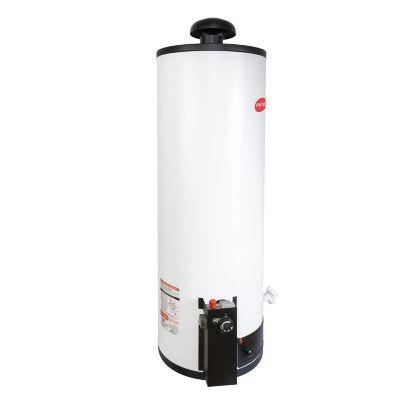 Calentador de depósito Enerhit gas LP 80 lt