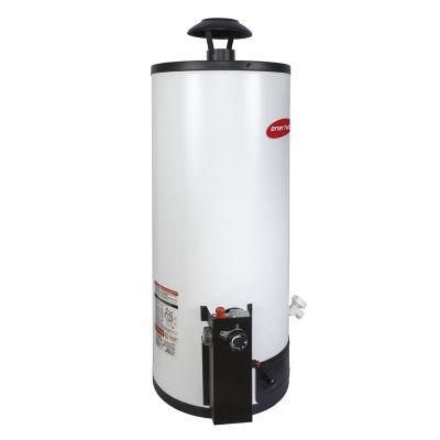 Calentador de depósito Enerhit gas LP 60 lt