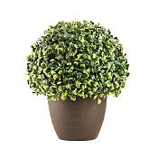 Mini Ball Boxwood 28 cm