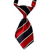 Corbata Ajustable Raya Azul con Rojo Talla M